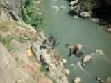 Пародия на рекламу (советские фильмы) [360]