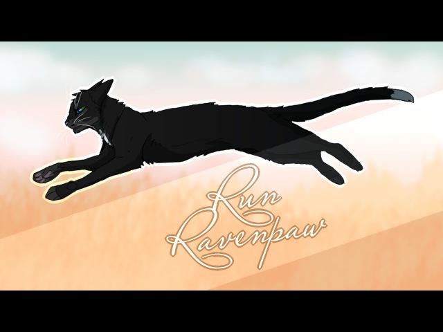 ◁ WARRIORS ▷ Ravenpaw | Run | PMV