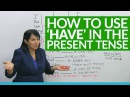 Learn English Grammar: to have in the present tense