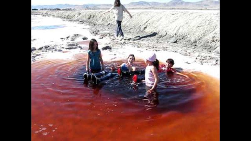 Searles Lake Brine Pool- kids floating