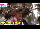 AYARACHIS DE ANTALLA ( Musica Incaica) - Miski Takiy (08/Ago/2015)