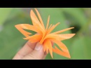 How To Make Carrot Carving Butterfly Garnish | Lavy Fuity