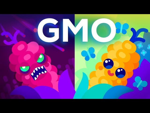 Are GMOs Good or Bad? Genetic Engineering Our Food