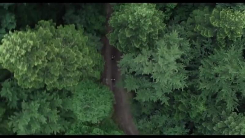 Лес призраков (The Forest) (2016) трейлер русский язык