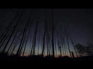 Художественные фильмы смотреть онлайн  Вектор духовности