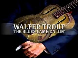 Walter Trout - Born in the City