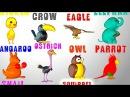 Английский язык для детей учим животных и цвета