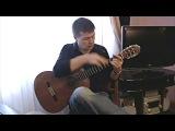 Megamouth (by Masaaki Kishibe). Tapping &amp Slap fingerstyle - V.Sharii