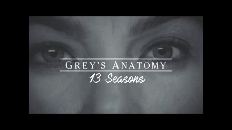 Grey's Anatomy 13 Seasons