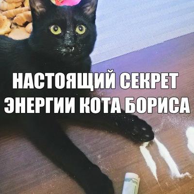 Bato Mitupov