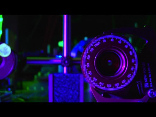 Quantum Entanglement Lab - by Scientific American