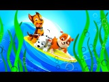 Игрушки для Мальчиков ЩЕНЯЧИЙ ПАТРУЛЬ В Ванной ПРЕВРАЩЕНИЕ и Гонки PAW Patrol  для детей