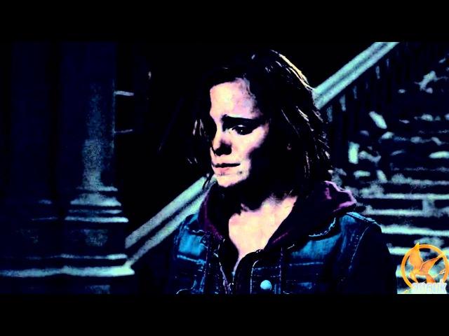 Draco Hermione | My Immortal [dedications]