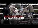 Muay Thai Fighting Styles Part 2 - Muay Femur (Technical Fighter)