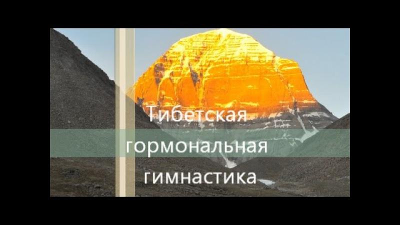 Тибетская гормональная гимнастика тибетская гормональная гимнастика 2