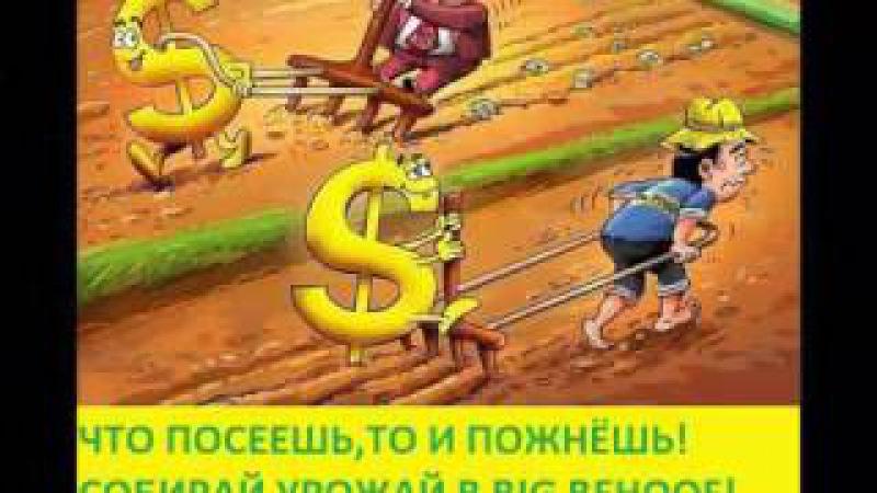 Мой доход и вывод с кабинета BIG BEHOOFй денег на кошелёк Вера Сафонова