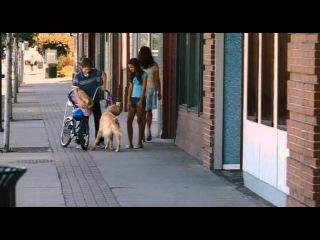 Алмазный пес (2008)