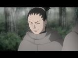 Наруто: Ураганные Хроники  Naruto: Shippuuden - 2 сезон 491 серия [Rain.Death]