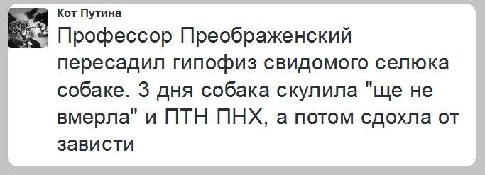https://pp.vk.me/c638726/v638726761/1dfc/5j1-GGvrWHk.jpg