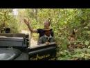 «В поисках людоеда 3. Голодные тигры» Познавательный, природа, животные, 2011