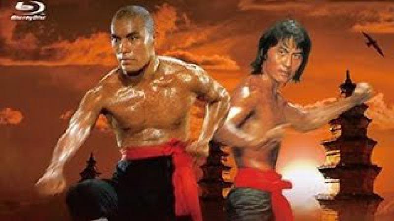 18 бронзовых бойцов Шаолиня (боевые искусства 1976 год)