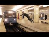 Сальто перед поездом ради славы