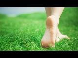 Мастер-класс Работа с ногами (часть 2 из 3), Александр Иванов