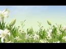 Мантра любви Пение этой мантры наделяет любовью и всеми земными благами