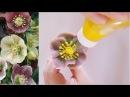 앙금플라워 헬레보루스(hellebore) 백묘국(dusty miller) ::bean paste flower piping techniques