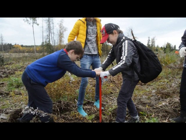 Хоббиты из ойкоса сажают лес