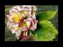 Гортензия из фоамирана. Мастер-класс flowers fom