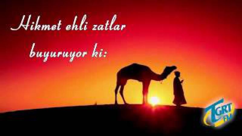 Din Kardeşini Tenkit Hikmet Ehli Zatlar buyuruyor ki Mustafa Toköz