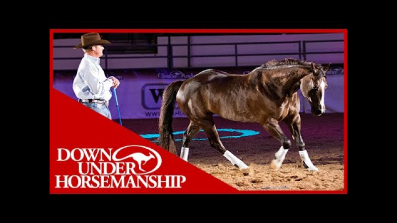 Clinton Anderson with his amazing horse Mindy in Vegas 2010