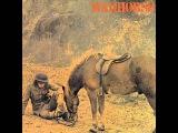 Warhorse - St. Louis