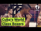 Cubans Can Throw a Mean Punch – The World's Best Boxers