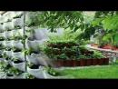 Грядки для клубники идеи для дачи сада и огорода от дачников садоводов хенд мейд своими руками 1