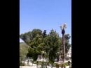 Video-2015-05-26-14-08-07