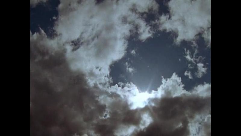 Дикая Австралазия (2003) сердце пустыни