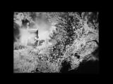Самые первые внедорожники начала 20 века, архивное видео