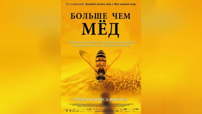 Больше чем мед (2012)   More Than Honey