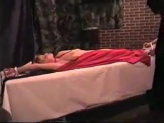 Shiloh in the navel