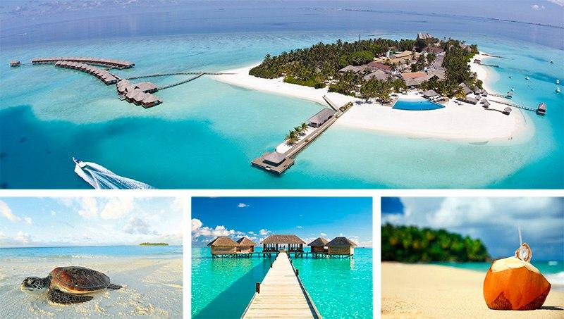 Om4So3ql4Og Мальдивы прямой рейс