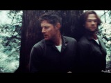 Sam and Dean - Game of Survival (SongVideo request)
