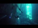 Погружение 31 декабря 2016 года в Cenote El Pit. Съемка и монтаж - Валерия Санина