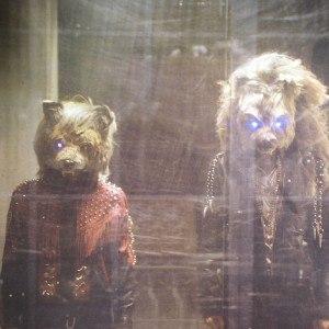 Fox n' Wolf