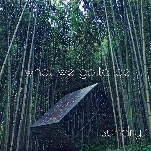 Sundry альбом What We Gotta Be