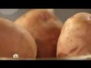 Что стало с человеком, который 8 месяцев ел одну картошку