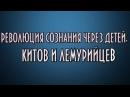 РЕВОЛЮЦИЯ СОЗНАНИЯ ЧЕРЕЗ ДЕТЕЙ КИТОВ И ЛЕМУРИЙЦЕВ ченнелинг