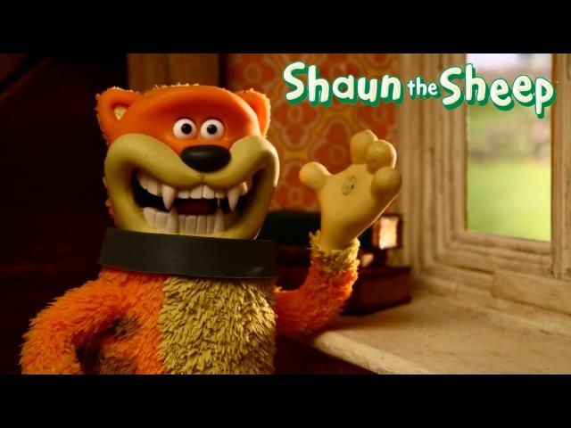 Shaun the Sheep Full episodes 5 compilation | Барашек шон. Мультик. Все серии подряд 5