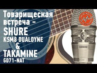 Гитара Takamine GD71 & микрофон Shure KSM8